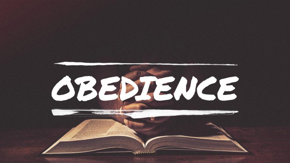Obediance Image