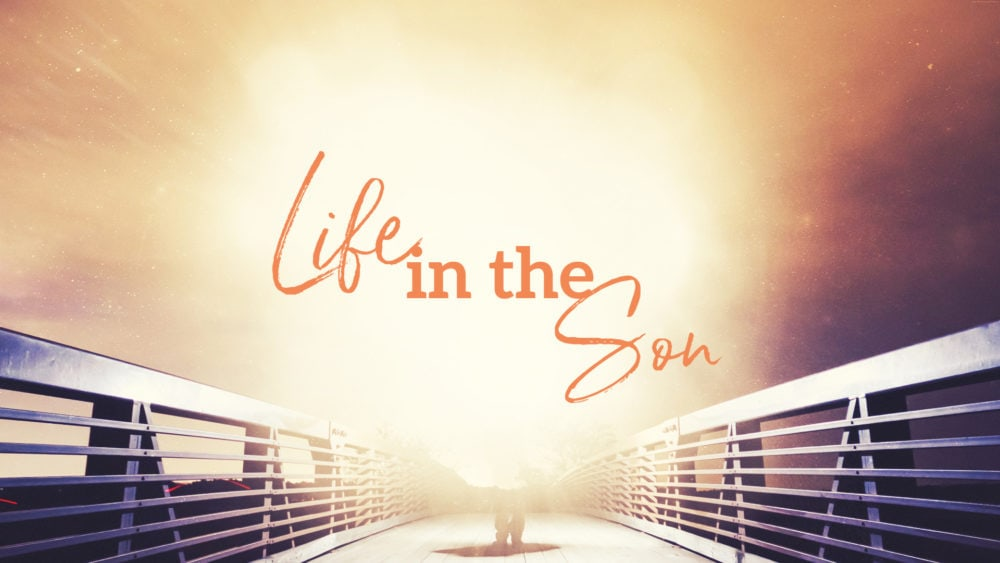 Life in the Son #8 Image